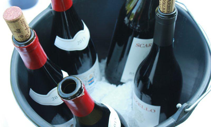 a47591bd5cc Vin-fest i denne uge i Bichel Vine: Smag på 25 vine for 25 kr.