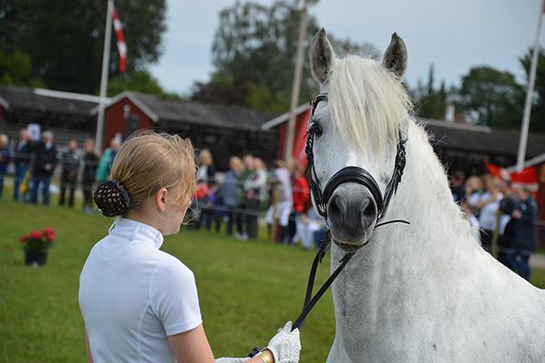 Foto: Camilla Bønløkke,