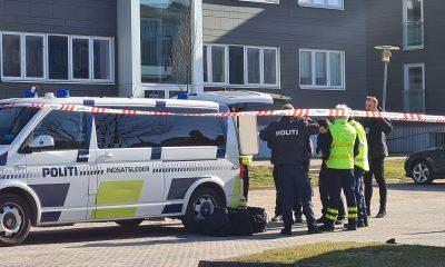 Arkivfoto Pressefotos.dk